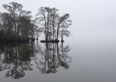 Edenton Harbor Cypress- Edenton, NC