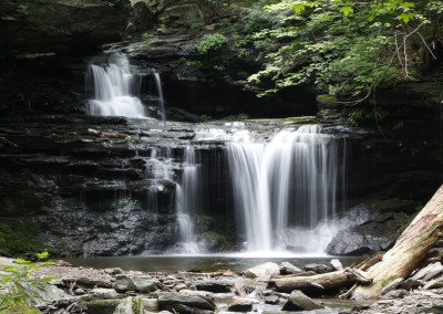 Dead Log Falls- Ricketts Glen, PA