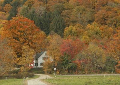 Farm House Fall Color- Vermont