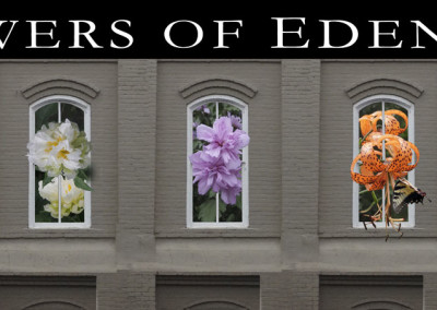 Flowers of Edenton - 2