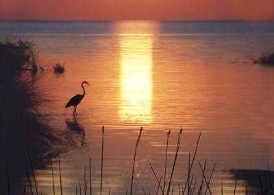 Cape Hatteras Sunset- Avon, NC