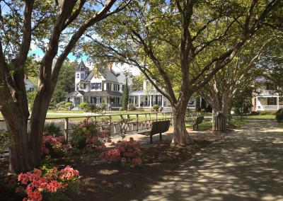 Queen Anne Park Azaleas- Edenton, NC