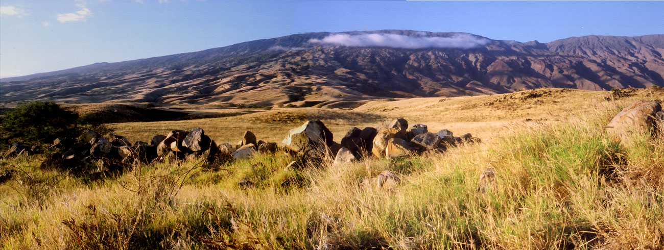 Mt Haleakala Desert- HI