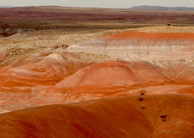 Painted Desert- NM
