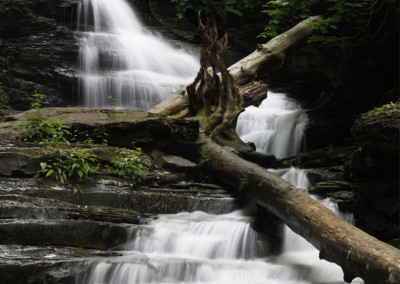 Y Wood Falls- Ricketts Glen, PA