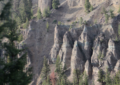 Buffalo Cliff -Yellowstone, WY